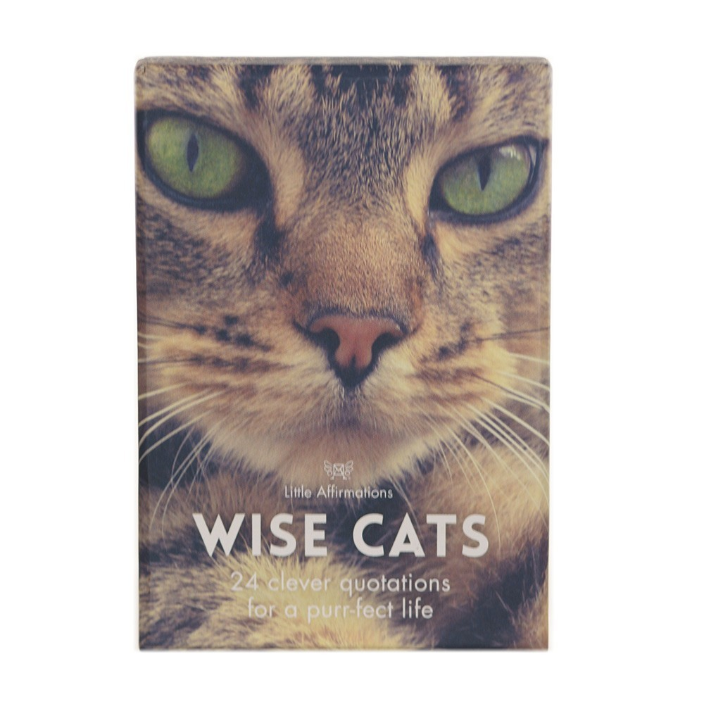 CARDS Wise Cats 24