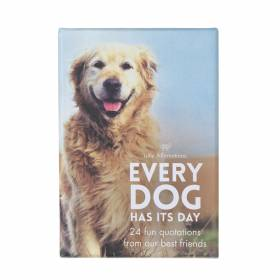 AFFIRMATION CARDS Every Dog Has It's Day