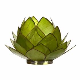 CABBAGE Capiz Tealight Holder Green
