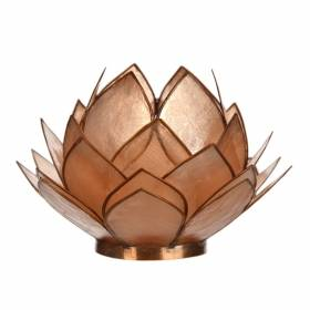 CABBAGE Capiz Tealight Holder Bronze