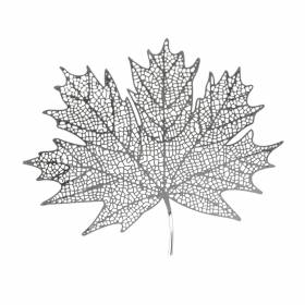 Maple Leaf Silver Plated