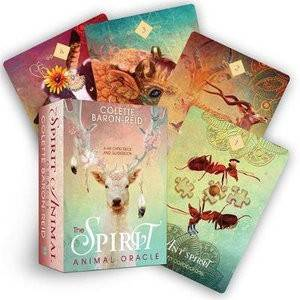 ORACLE CARDS Spirit Animal Oracle - Colette Baron-Reid